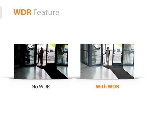 WDR-Feature10.jpg